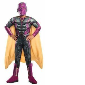 Boys Marvel Avengers Vision MUSCLE Costume-S, M, L